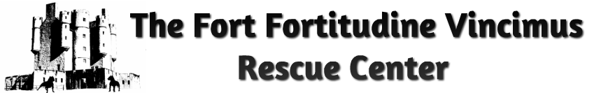 The Fort-Fortitudine Vincimus Rescue Center